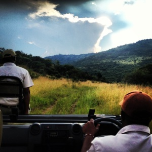 This was my typical view on our game drives. I love how the sun shines through the clouds to resemble a lightening bolt in this photo